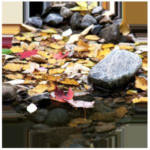 Sassi di fiume - Eleonora Tarabella