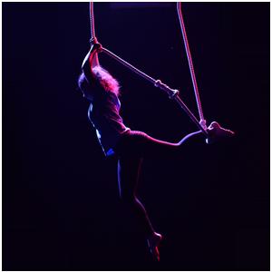 la coraggiosa trapezista Le storie di Viwop Virginia Woolf Project